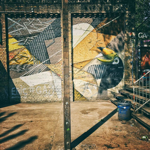 Toucan. #berlin #berlinstreetart #germany #urbanart #wallart #wallporn #streetart #streetartistry #streetartberlin #igers #igersberlin #toucan #wall