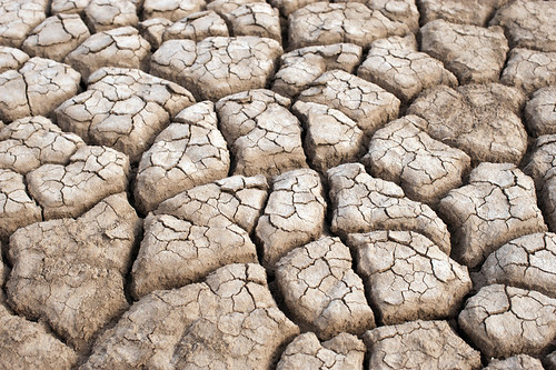Dried up land