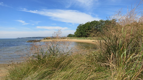 Beach, Newtowne Neck State Park, Compton, MD