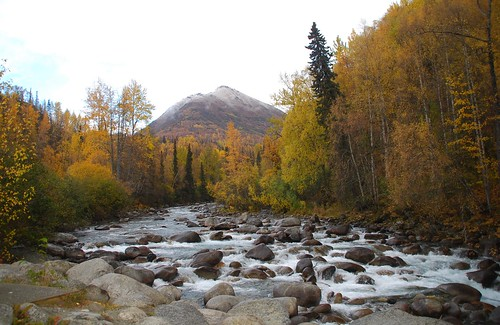 alaska littlesusitnariver outstandingromanianphotographers