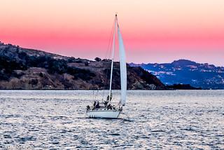 San Francisco from Cavallo Point-7