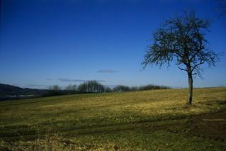 Winterbach - Auf der Heide