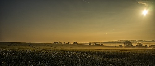 sonya7rii tokina2035mmlens tokina landscape marlborough wiltshire spring morning sunrise mist misty contrails canola oilseedrape yellow perfecteffects10 onone on1 farming crops a7ii α7ii