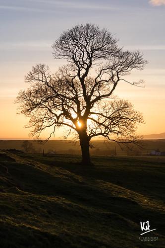 2017 dumfriesandgalloway dumfriesshire hoddom january repentancetower scotland sonya7ii sonyfe470200goss landscape sunset winter