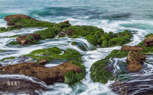 california blue sea seaweed green water rock flow la unitedstates sandiego cove tide low jolla ebb watermarked