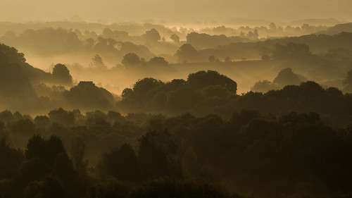morning autumn sunrise dawn mists bringstycommon