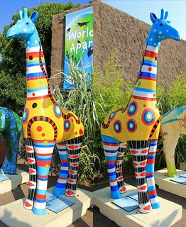 Stand Tall 2013 - 50 years of Colchester Zoo | by Karen Roe