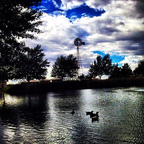 square lofi squareformat iphoneography instagramapp uploaded:by=instagram foursquare:venue=4d5dc3081939a35de04801ee