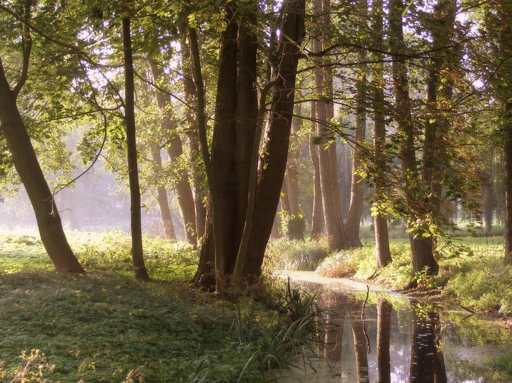 Morning Light Explore Halina P Flickr