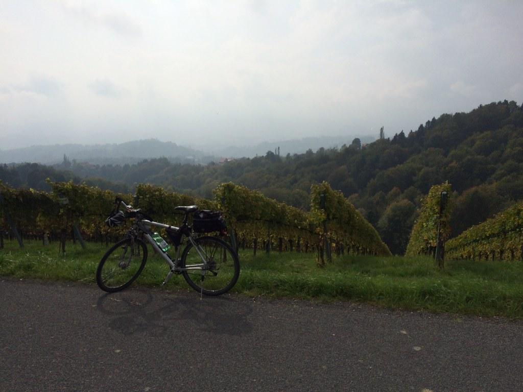 WeinBergRadln II