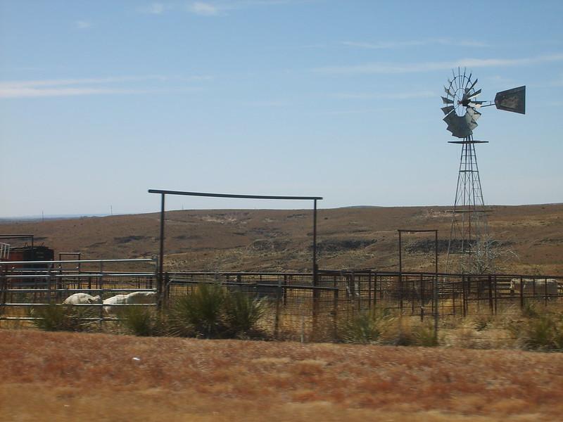 Windmill...S5001633