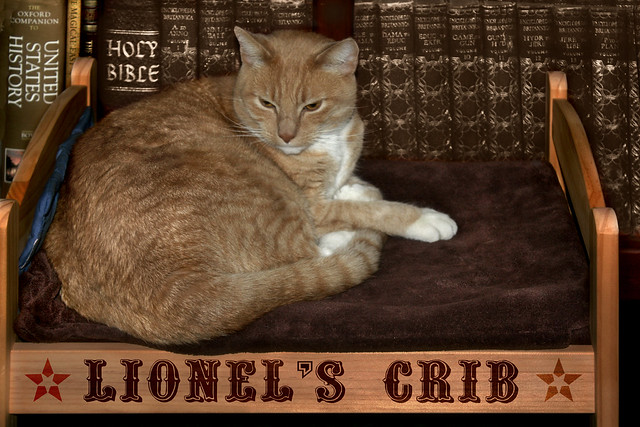 Lionel's Crib