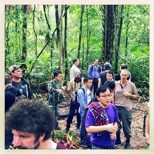 Wed, 07/20/2016 - 02:37 - 2016 ForestGEO NSF Dimensions Workshop in Hainan, China