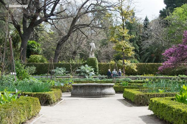 Kuninkaallisen kasvitieteellisen puutarhan kasveja ja suihkulähde