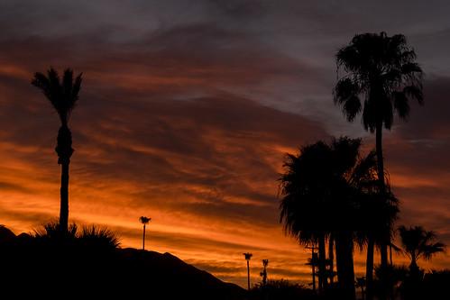 california sky cloud silhouette outside fuji outdoor vibrant tripod palmsprings palmtrees fujinon xseries apsc xt1 mirrorless 365challenge lowdesert xshooter xmount xflens xtranssensor 18135oiswr