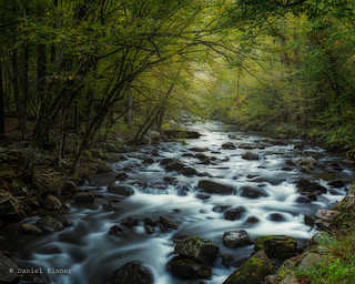 Smokys Oct 2014-9   by dkinner