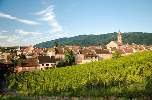 morning houses france beautiful architecture sunrise early village vine hills alsace picturesque grapevine halftimbered riquewihr picturesquevillage thegemofthealsacevineyards