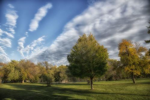 park blue trees sky clouds centennial oak october lawn il 2014