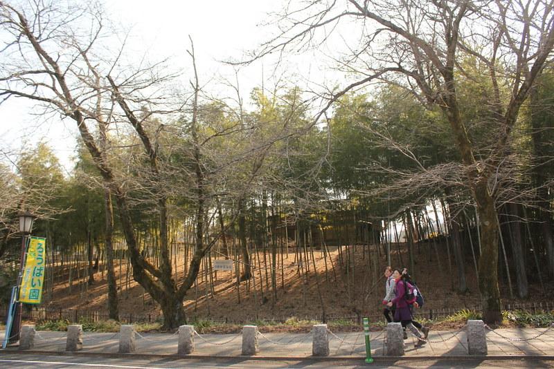 2014-02-01_00331_宝登山