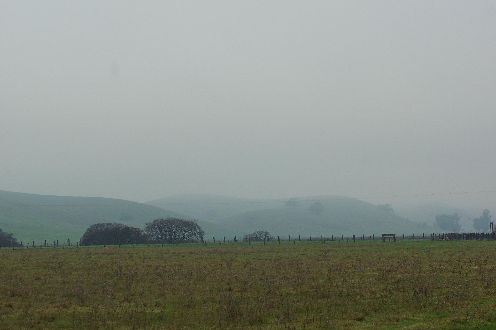 2017-01-24 Mount Diablo hiding in Fog [#1]