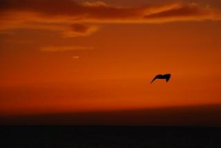 Sunset in Asilah