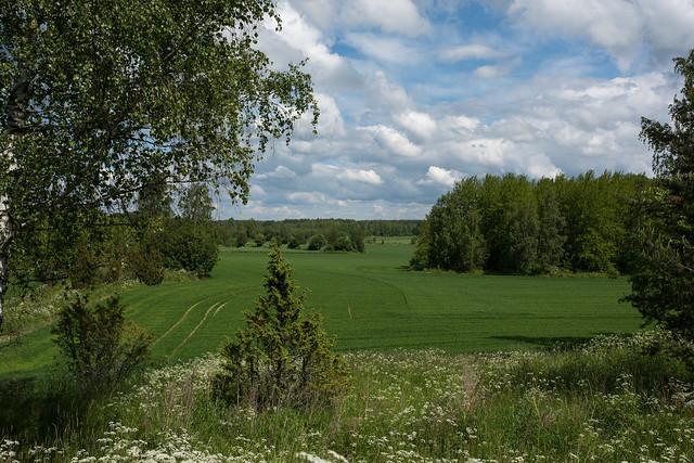 A field in the western Finland