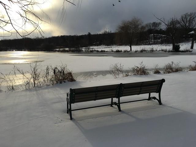 the bench awaits