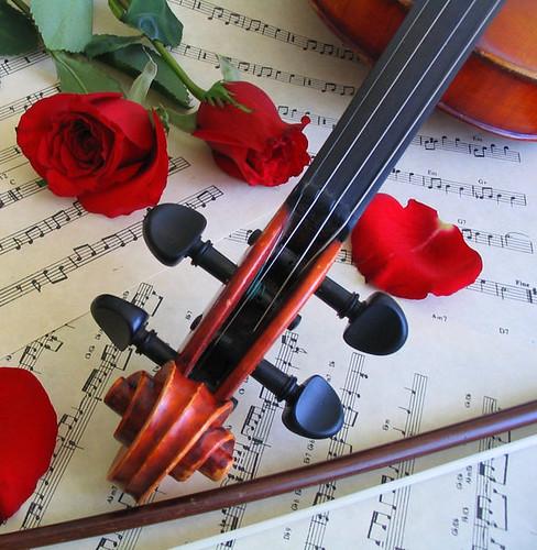 cm_violin1_152