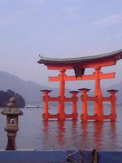 floating torii at itsukushima shrine