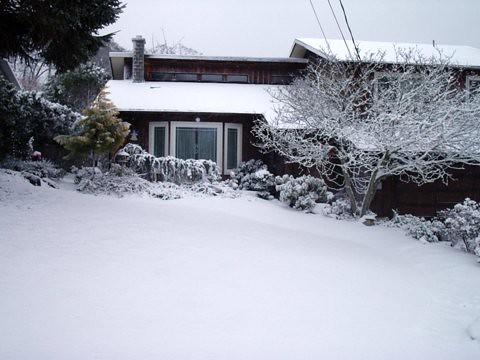 Snow at the Aquino homestead