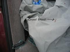 gross_blood