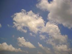 我記得那藍天,微風帶來的清涼,和雙眼的濕度。