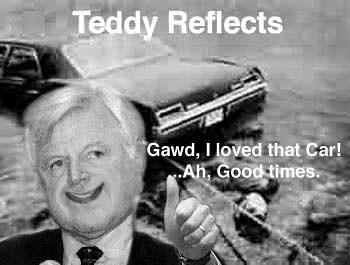 Teddy reflects