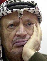 arafat3