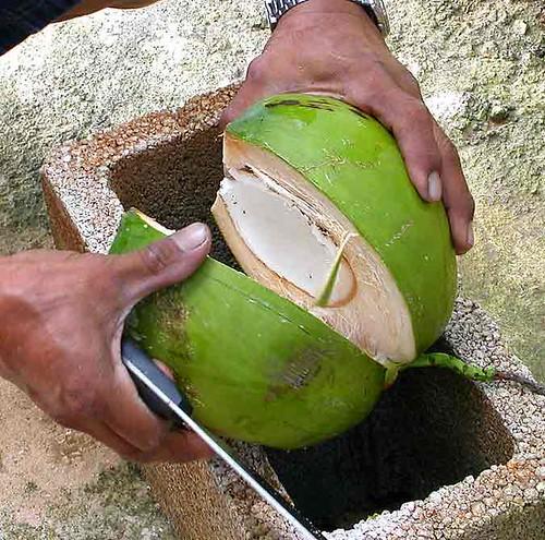 splitting coconuts