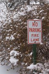 Snowy Fire Lane
