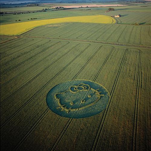Crops-circles 4821252_a781e254c0