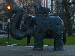n park elephant