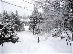 Journée-de-neige