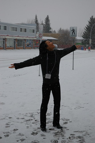 snowtasting