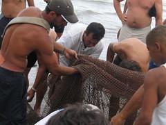 Nets in Garopaba