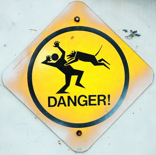 Caution: Low Flying Dogs | by Mark Strozier