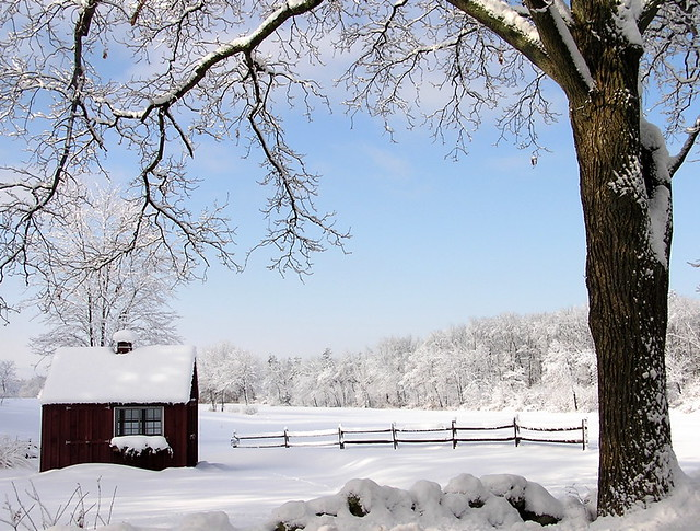 farmstand in winter