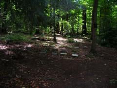 Pet Cemetery5