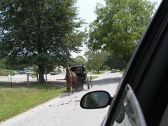 three Amish buggies