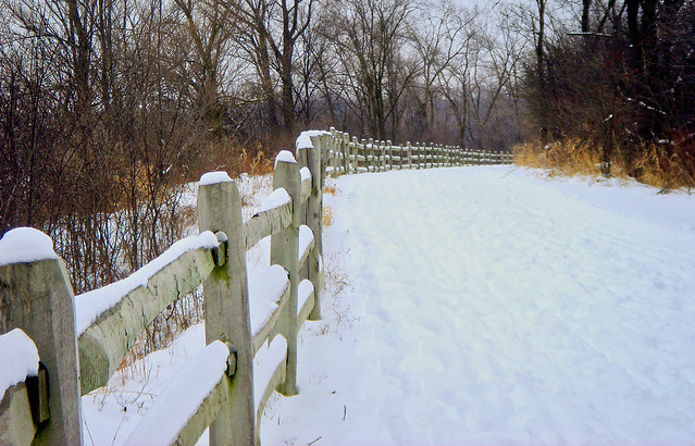 Blackwell Forest Preserve - Fence