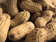 peanuts | by tamburix
