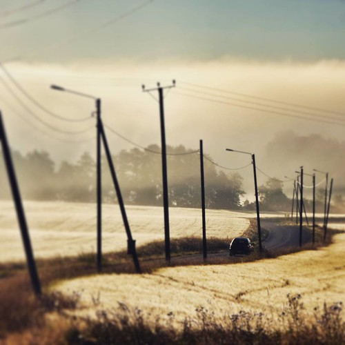 road morning summer mist field car fog sunrise suomi finland square finnland squareformat scandinavia crema finlandia フィンランド finlande finlândia finnország finlanda finlàndia финляндия finnlando iphoneography instagramapp uploaded:by=instagram