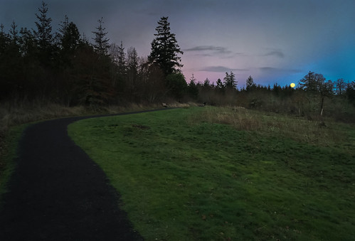 iphone winter overlooktrail iphone6s evening dusk coopermountainlooptrail blue oregon moonrise december coopermountainnaturepark trail fullmoon green path magentaandblue iphoneography beaverton unitedstates us