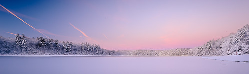 waldenpond massachusetts dawn sunrise nature morning sky lake trees winter snow nikon d700 1635mm outdoor